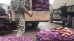 Картошка 4000 сўмга чиқди