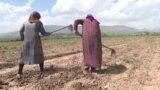 Рахмон «разрешил» фермерам не держать Оразу