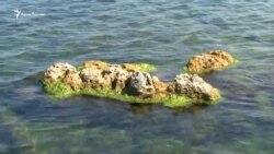 Севастополь: что происходит на пляжах города? (видео)