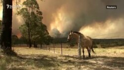 Rekordan broj požara u Novom Južnom Walesu