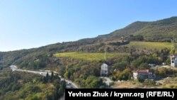 Пригодные для земледелия участки заняты виноградниками «Массандры»
