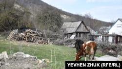 Под Крылом Дракона: тихая жизнь крымского села Тыловое (фотогалерея)