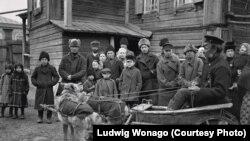 Farkasok húzzák a szekeret Krasznojarszkban 1904-ben.