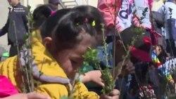 Бишкек жашыл шаарга айланат