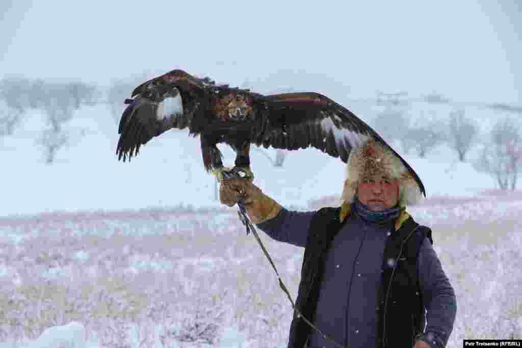 На турнирот учествуваа натпреварувачи од десет региони на Казахстан. Поради пандемијата на коронавирусот, имаше ограничувања за нив. Им беше дозволено да донесат само по две птици од секој регион, еден сокол и еден орел. На оваа фотографија ловец со див орел се подготвува за почеток на натпреварот.