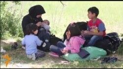 Патот на мигрантите низ Балканот, пат на страдања