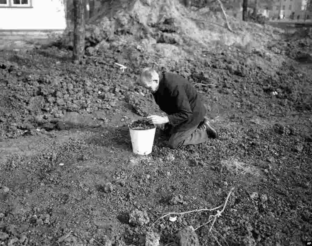 A man picks nuggets of coal out of a slag heap.