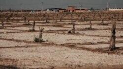 مستند «زمین سوخته»؛ اینجا خوزستان است، تشنه و عصبانی