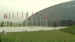 70 лет НАТО. Юбилей военного альянса
