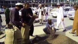 افغان سوداګر خپل زڼغوځي نړیوال مارکیټ ته رسول غواړي