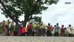 Musulmanii rohingya din Mianmar continuă să se refugieze în Bangladeș