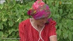 На орендованих землях Рівненщини впритул до будинків селян розпилюють хімікати?