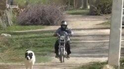 Мотоциклчен ветеринар аял