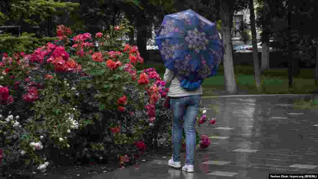 Девушка рассматривает мокрые от дождя розы