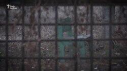 «Попаде, так попаде» – діти Донбасу живуть на лінії зіткнення (відео)