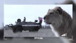 Зубков просится назад в «украинское болото» (видео)
