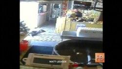 В Орегоне тюлень попытался ограбить рыбный магазин