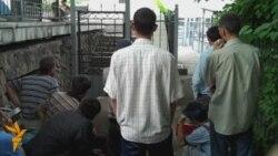 Өзбекстан босқындары БҰҰ-дан көмек сұрайды