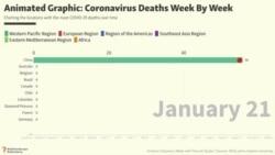 Animated Graphic: Coronavirus Deaths Week By Week