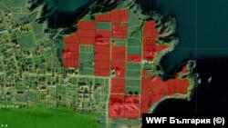 В отбелязаните в червено имоти е възможно да се строи