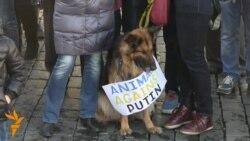 Антипутінський марш пройшов у Празі