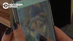 Tinder для собак: как это делают в Литве