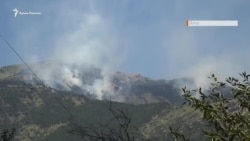 Лесной пожар в Ялте: горит заповедная зона (видео)