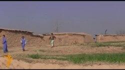 'پاکستان حکومت دې افغان کډوال نه ځوروي'