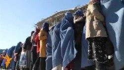 Uri gjatë dimrit në Kabul