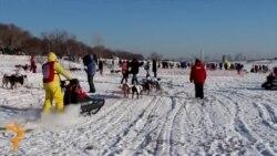 أخبار مصوّرة 3/02/2014: من اطلاق النار في مدرسة في روسيا إلى الطقس البارد في جورجيا