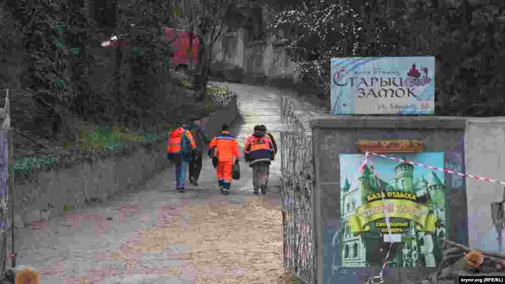 Теперь рухнувшим деревом занимаются городские коммунальщики