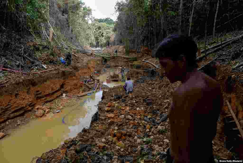 Egy janomami indián nézi, ahogy a brazil környezetvédők felmérik az őslakosok földjén feltárt illegális bányát 2016-ban