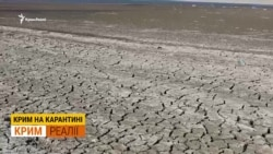 «Засуха вдарить по Криму страшніше, ніж коронавірус»