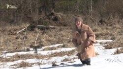 В России многодетные семьи поселили на болоте
