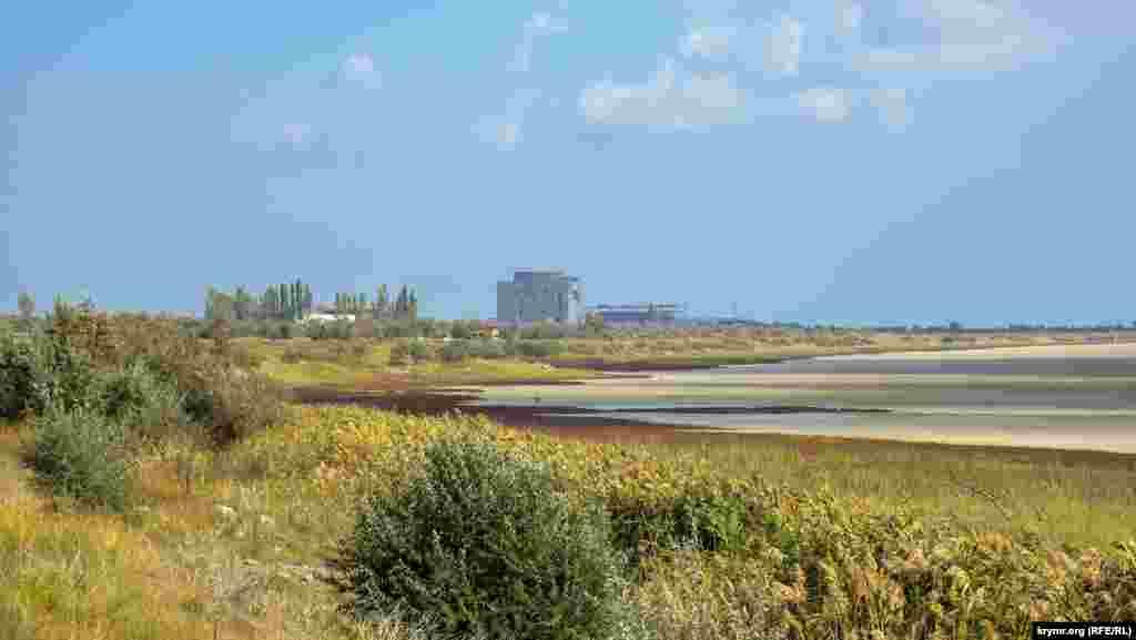Заросшие тростником и лохом берега озера на фоне полуразобранной Крымской атомной электростанции