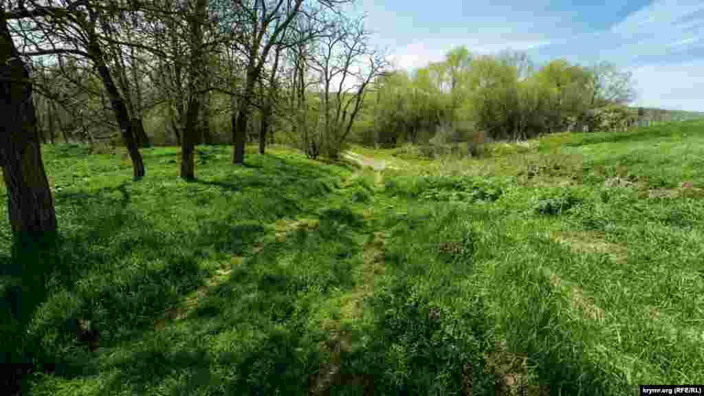 Зеленая пойма реки Бештерек