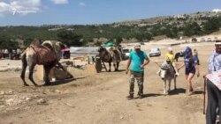 Верблюды и плюшевые «ждуны»: Ай-Петри после сноса построек (видео)