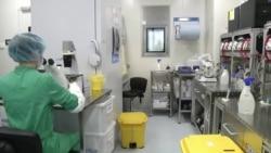 Коронавирус: российские ученые отчитались об успешной разработке вакцины (видео)