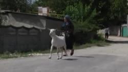Cioreşti: cine pune umărul şi banul pentru dezvoltarea comunei?