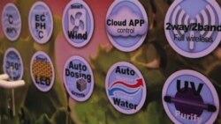Огород XXI века: растим урожай с помощью смартфона