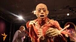 Виставка The Human Body в Києві