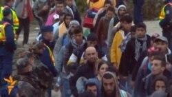 Германија сега очекува над милион ипол мигранти
