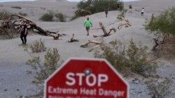 Visoke temperature u septembru - rezultat klimatskih promjena