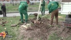 "Rekonstrukcija Studentskog parka: Građani ""Zelenilu"" ne veruju"