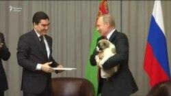Бердимуҳаммадов ба Путин саги зотӣ туҳфа кард