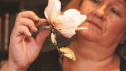"""""""Türelemjáték, de engem nyugtat"""" - virágok cukorból"""