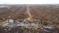 Заброшенные теплицы в Самарской области