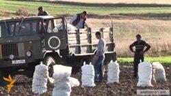 Գյուղացիները հերքում են գյուղնախարարության հրապարակած տվյալները