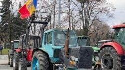 """Protestul fermierilor: """"Suntem în culmea disperării"""""""