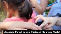 Deocamdată, un număr de 24 de persoane cu vârsta sub 18 ani sunt internate în spitalele din România